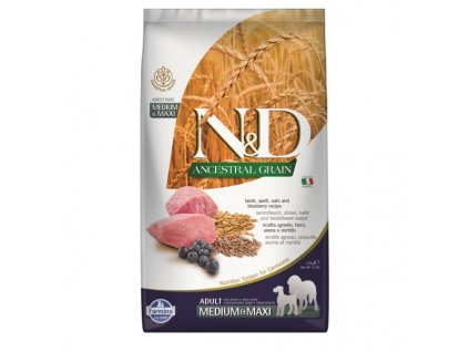 n d ancestral grain dog adult m l lamb blueberry 2 5kg original