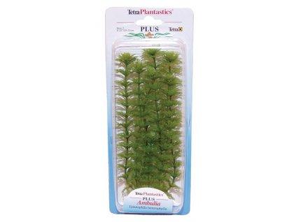 Rostlina TETRA Ambulia Plus 23 cm