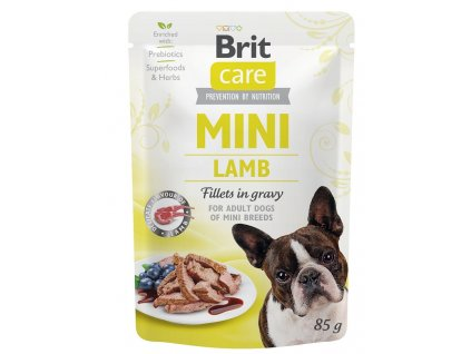 BRIT CARE dog MINI kapsa ADULT lamb