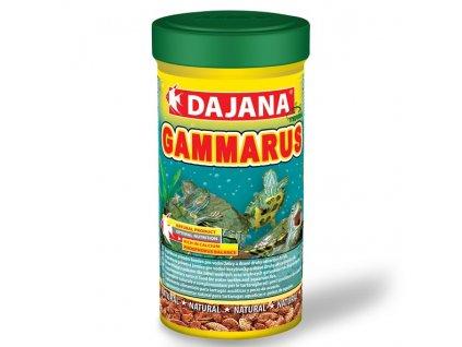 dajana gammarus zlaty 500 ml 1
