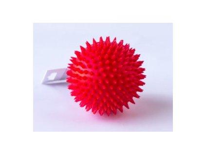 Salač míč s bodlinami