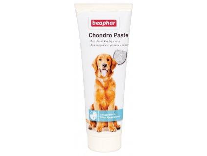 Beaphar Chondro Paste 250 g
