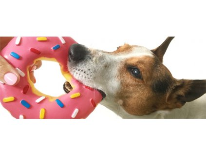 46347 jk animals piskaci vinylova hracka donut xl 14 cm 0