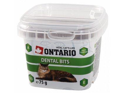 Ontario cat dental bits 75 g