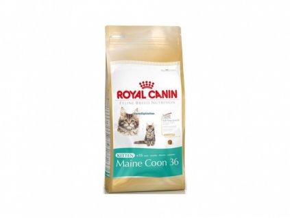 royal canin kitten maine coon 400g original