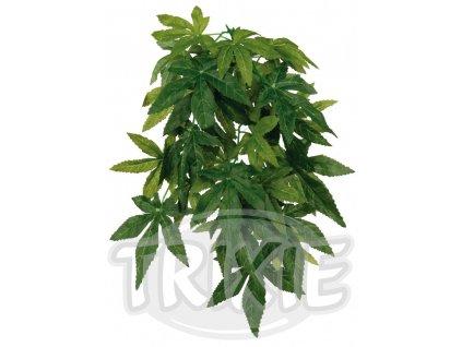 Trixie Abutilon závěsná rostlina 20x50 cm