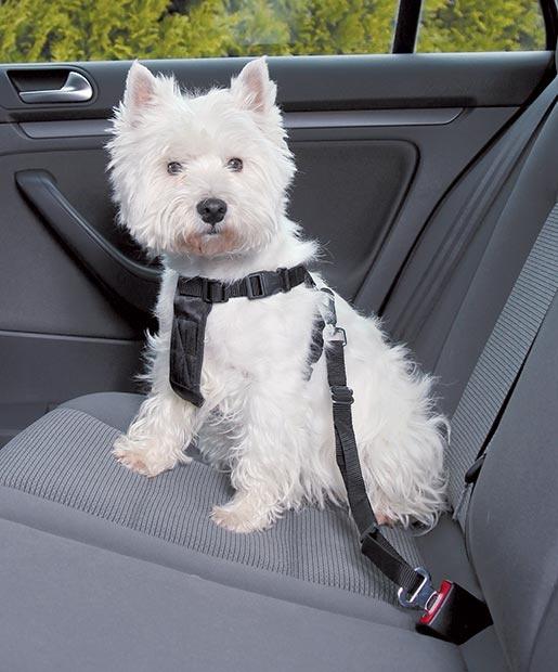 Postroj bezpečnostní pro psy do auta Trixie XS 20-50 cm černá
