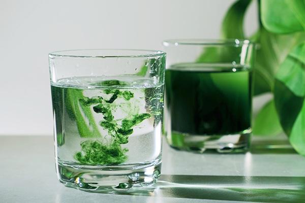 Tekutý chlorofyl: rozzáří pleť a nadupe tě energií