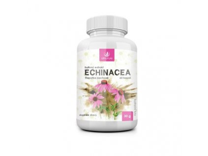 Allnature Echinacea bylinný extrakt 60 cps.