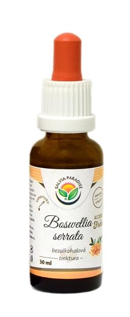 Boswellia serrata - kadidlovník bezalkoholová tinktura 30 ml