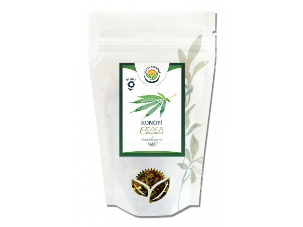 SalviaParadise Konopí CBD nať Canabis sativa