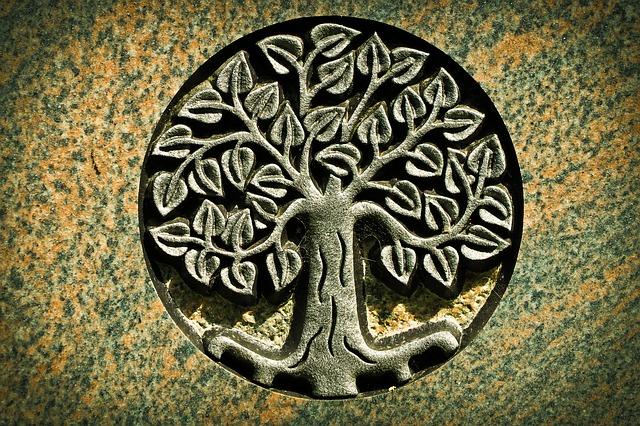 Význam a historie stromu života