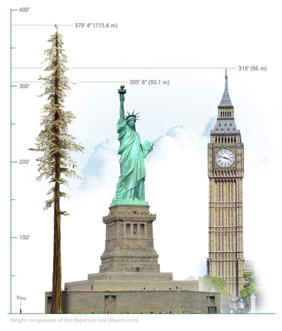 height-comparison-hyperion
