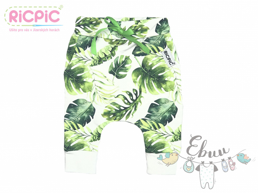 RicPic monstera baggy