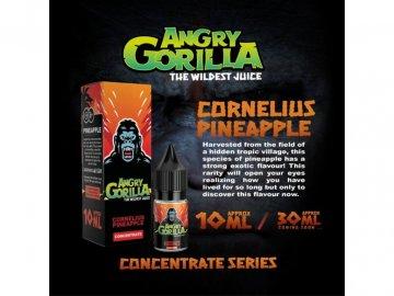 CORNELIUS 2