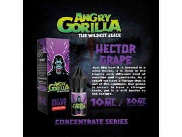 HECTOR 2