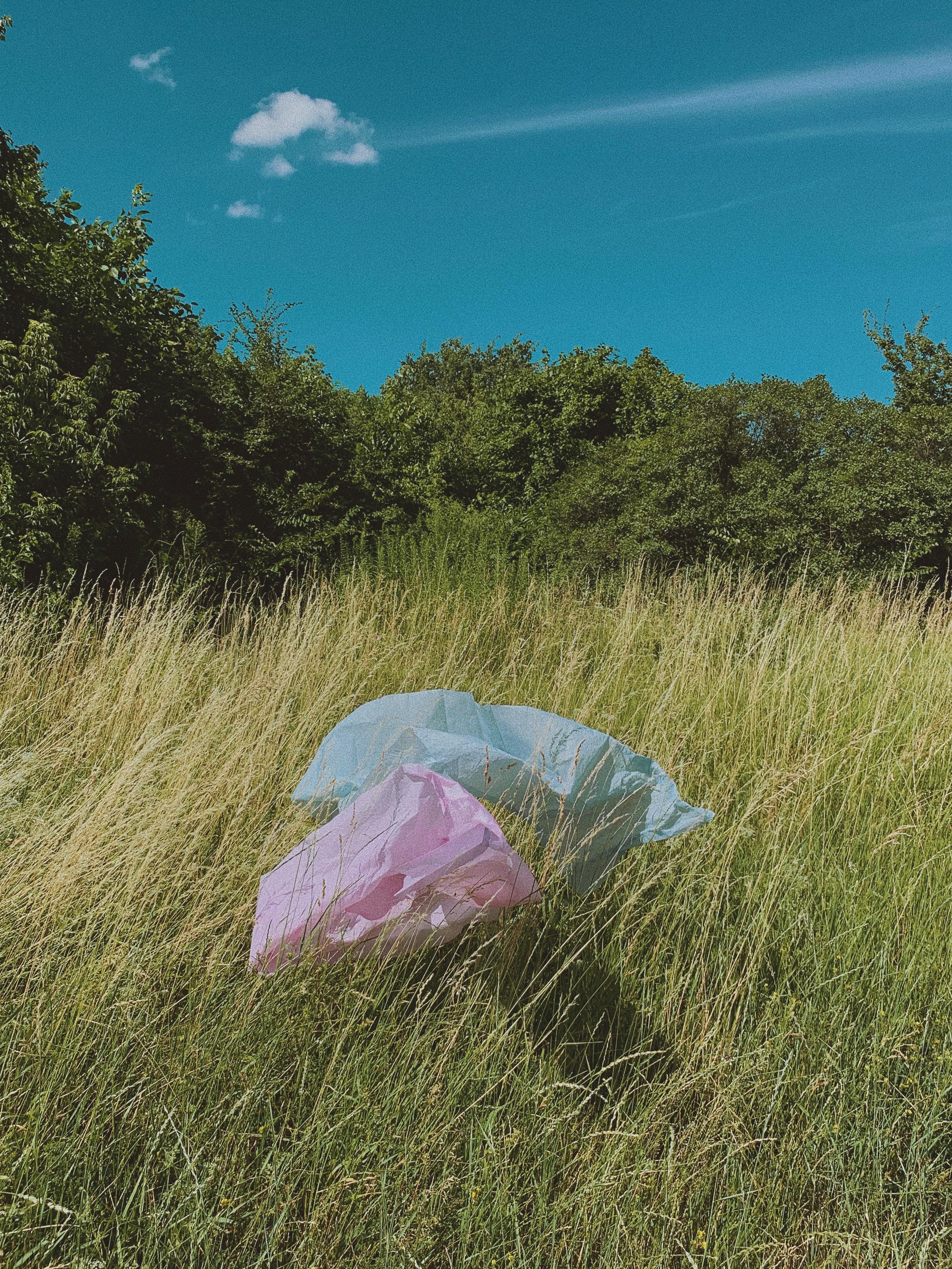Jak dlouho trvá rozložení odpadů v přírodě?