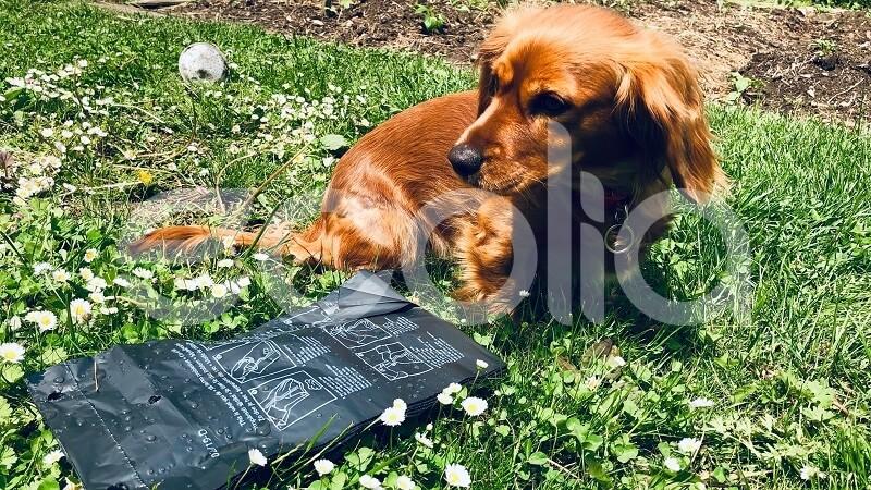 biobag-kompostovatelne-sacky-vrecka-na-psie-exkrementy-2