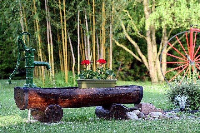 bambus-v-zahrade