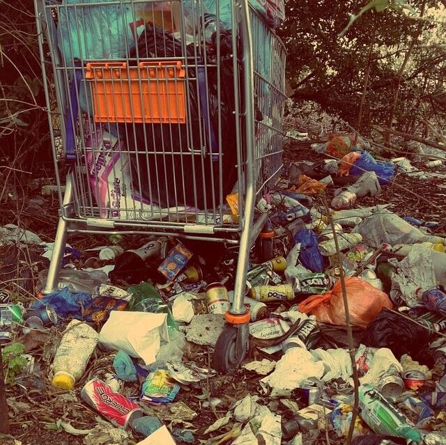 plasty-v-prirode