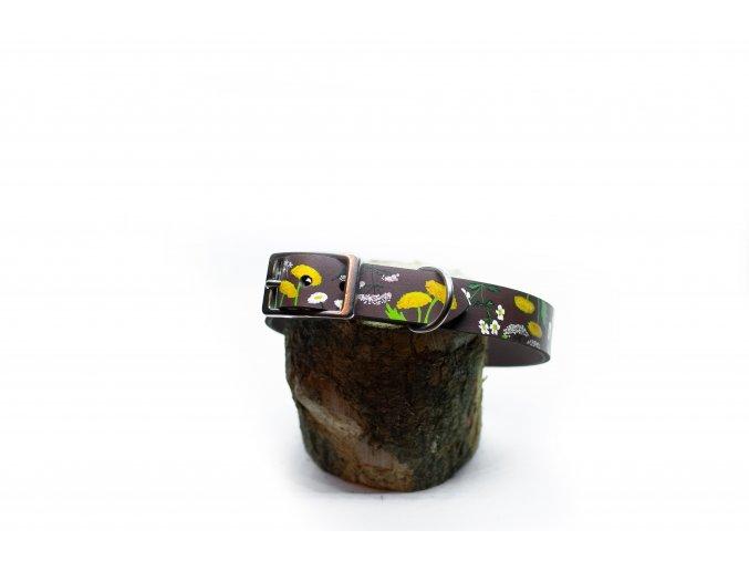 35 41cm ecopets kozeny obojek květy pampeliska bez sedmikraska violkaspona
