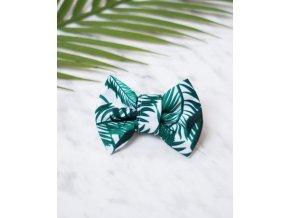 Palmový motýlek pawsome ecopets