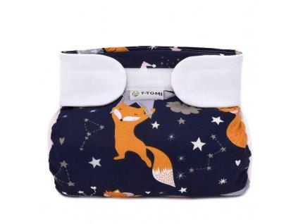 AK SZ night foxes 1 800x800