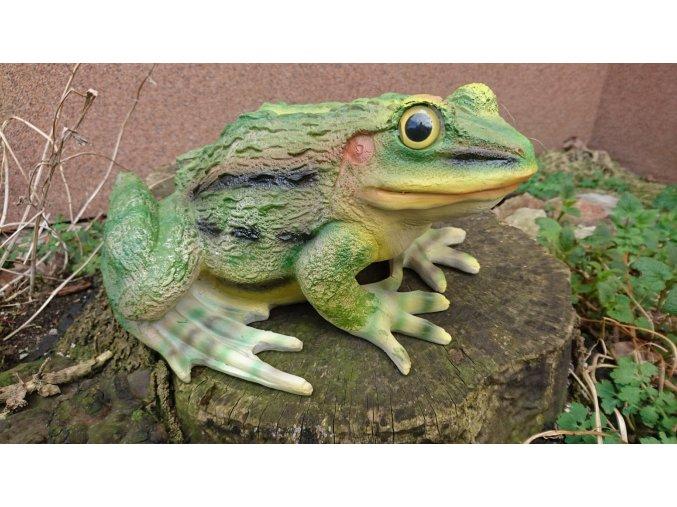Žába velká - figura do zahrady