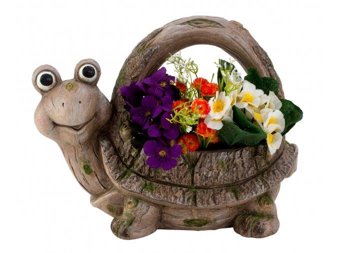 Želva obal na květináč