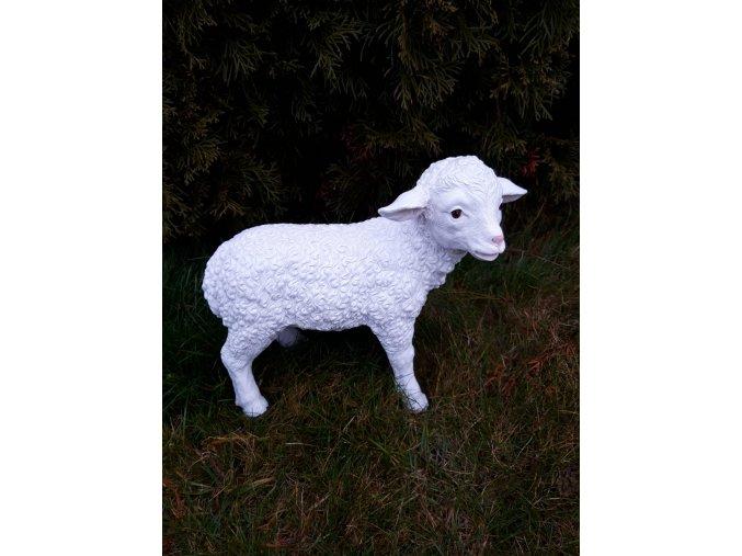 Ovce figura do zahrady