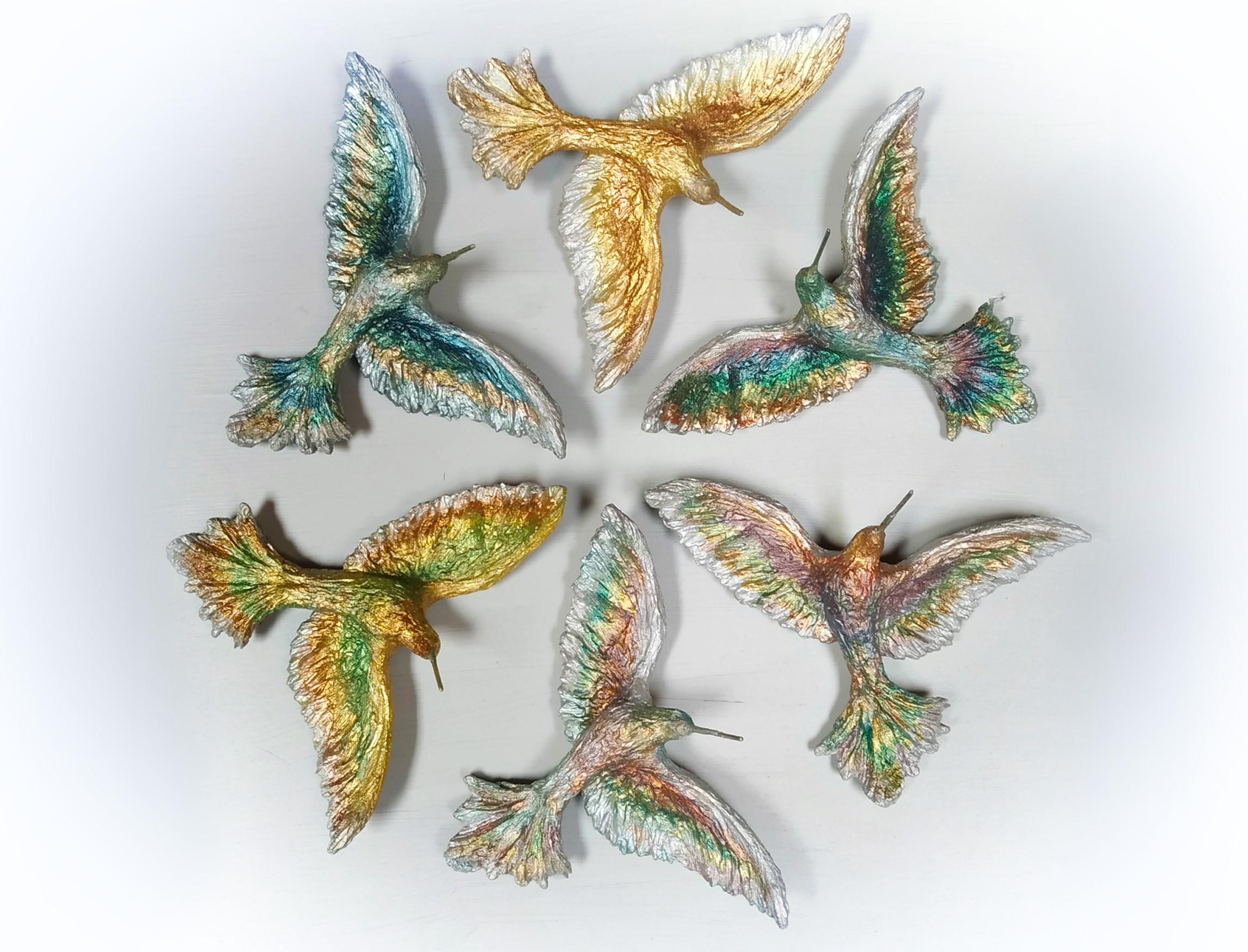 Kolibřík Eiwan