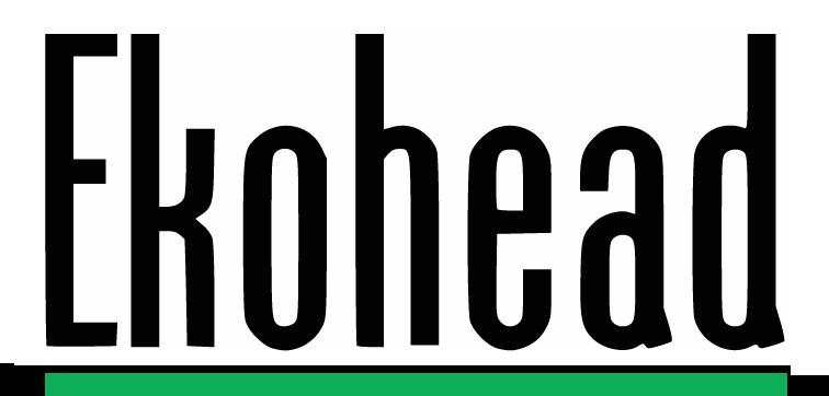 Ekohead