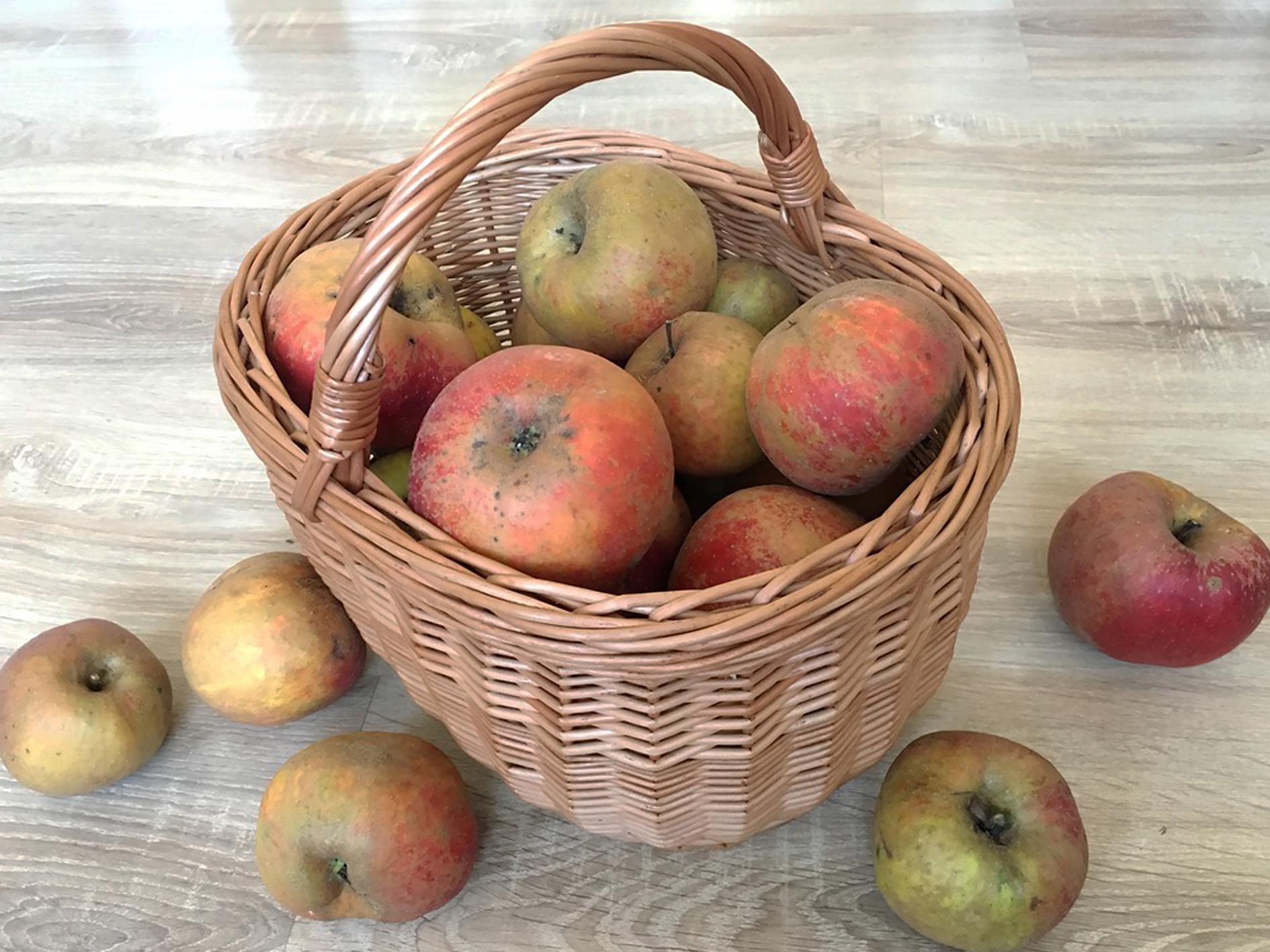 Jak zpracovat nadbytek jablek? Usušte si křížaly!