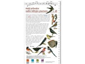 Malý průvodce naším běžným ptactvem 2. díl