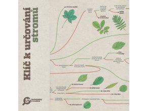 Klíč k určování stromů