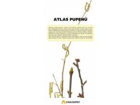 Atlas pupenů