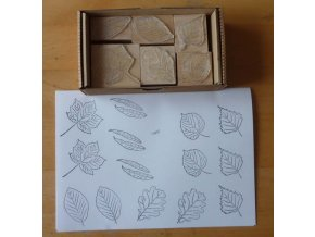 Razítka - sada: Listy listnatých stromů (6ks)
