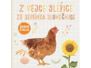 Z vejce slepice, ze semínka slunečnice - Životní cyklus