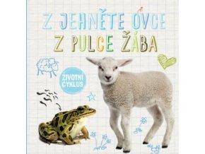 Z jehněte ovce, z pulce žába - Životní cyklus