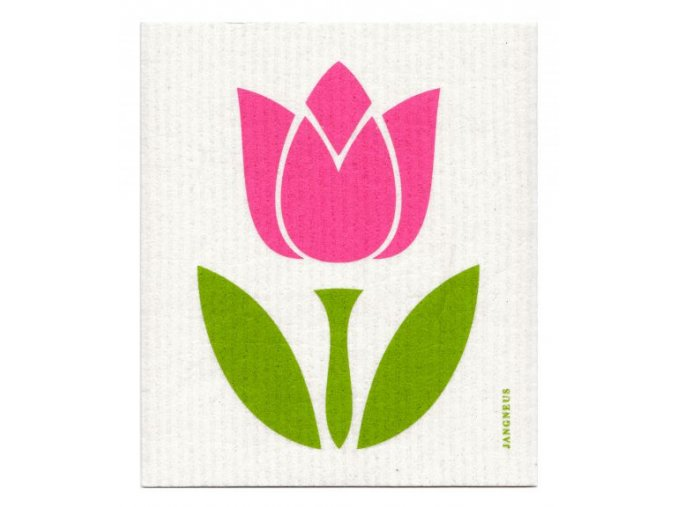 jangneus ruzovy tulipan