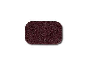 raspberry 570x830