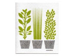 jangneus zerowaste ekologia hubka zelene bylinky