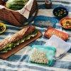 Sandwich Aqua LS Picnic