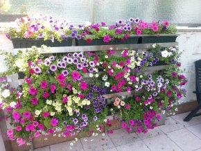 2310 2 vertikalni kvetinova stena