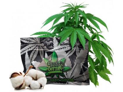 canna cotton organicka vata