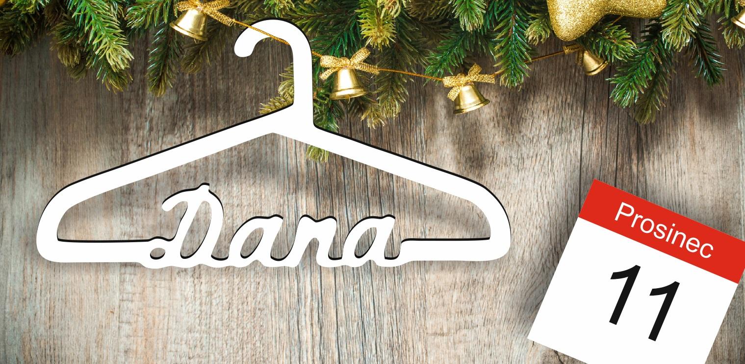 Vánoční dárek - Dana