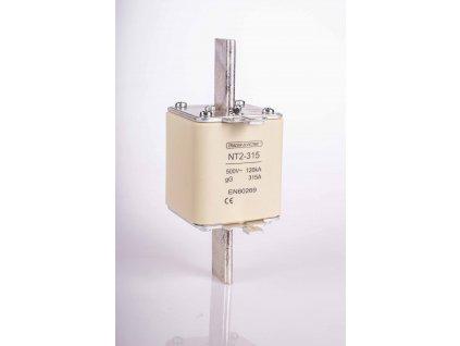 Nožová poistka 125A 500V AC gG NT2-125
