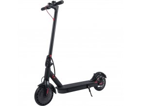New N4 electric scooter gofunsport