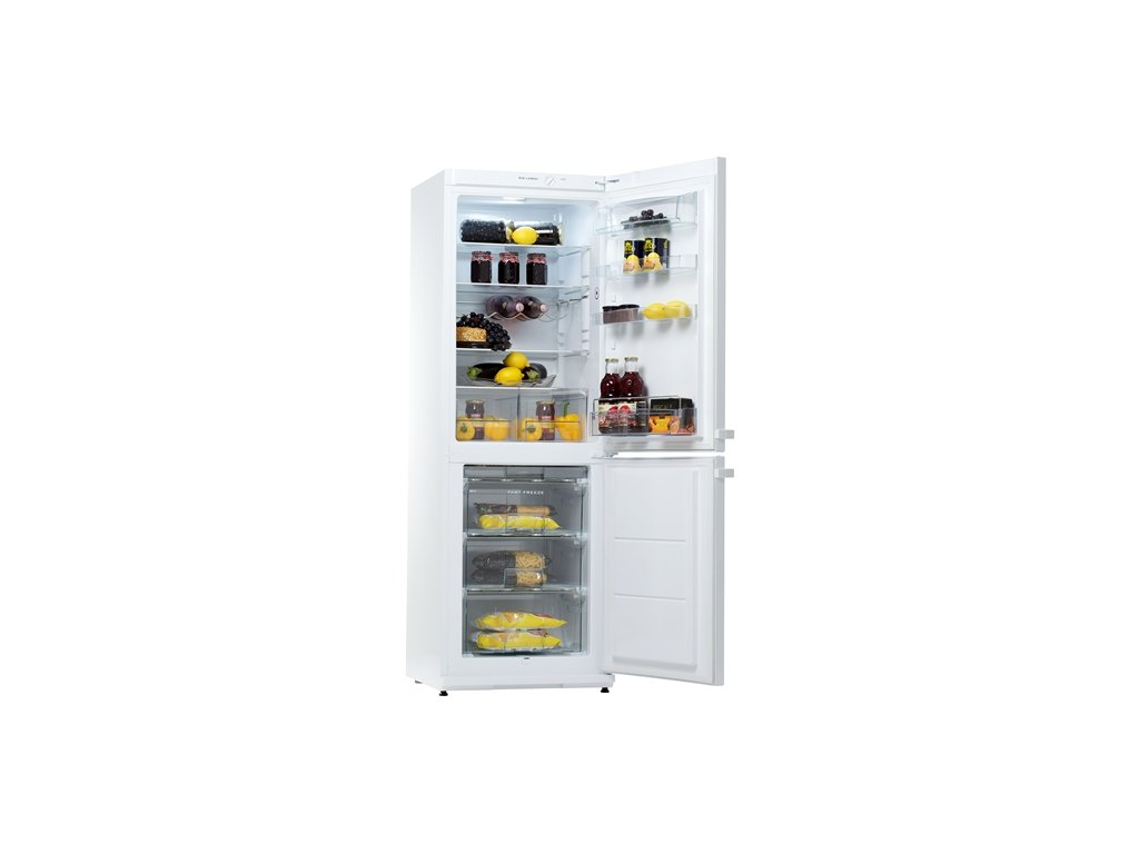 lednice snaige rf31sm p1002e