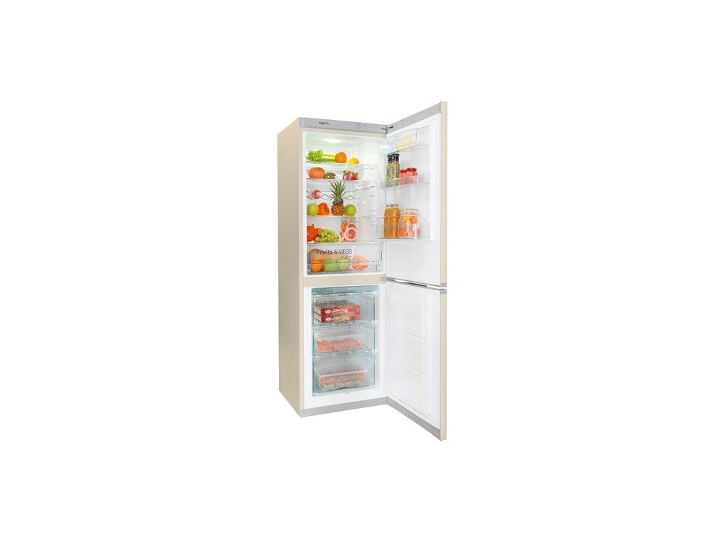 lednice s mrazakem snaige rf53sm s5dp2f